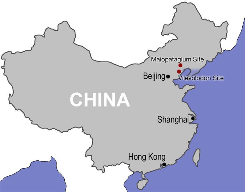 CHINA, EL GRANDE ASIÁTICO. ¡DONDE SI TU QUIERES, TE PERDERAS!